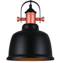 Modern Industrial Pendant Light with Black Shade - Dalia
