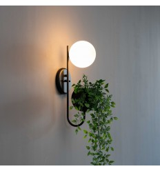 plant pot Wall lights - Florida